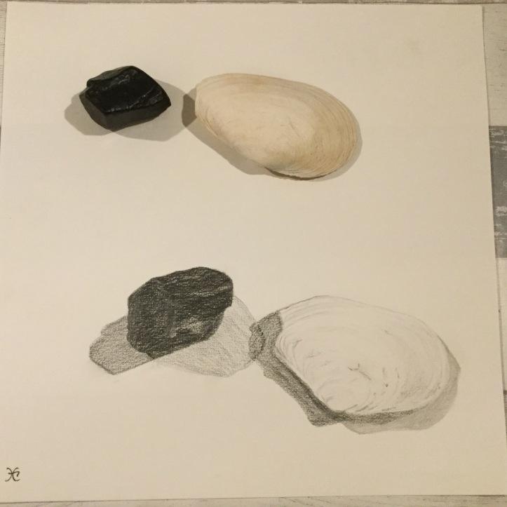 Zwarte Steen en Witte Schelp